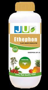 Chất làm chín trái cây Ethephon an toàn với sức khỏe con người