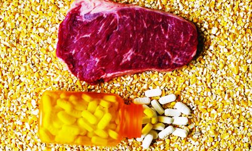 Xác định hàm lượng Lasalocid và Tylosin (Được dùng điều trị bệnh ở động vật ) trong các mẫu thức ăn cho động vật sử dụng phương pháp UPLS – MS