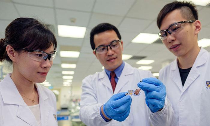 Kỹ thuật mới sử dụng hạt nano để phát hiện dư lượng thuốc trừ sâu
