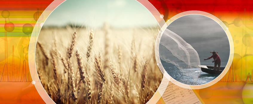 Xác định nhanh chóng 25 độc tố nấm trong ngũ cốc