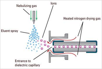 Phương pháp sắc ký lỏng ghép đầu dò khối phổ