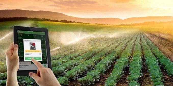 Ứng dụng Blockchain vào sản xuất nâng cao giá trị nông sản